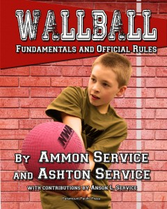 Wall Ball cover-Recovered